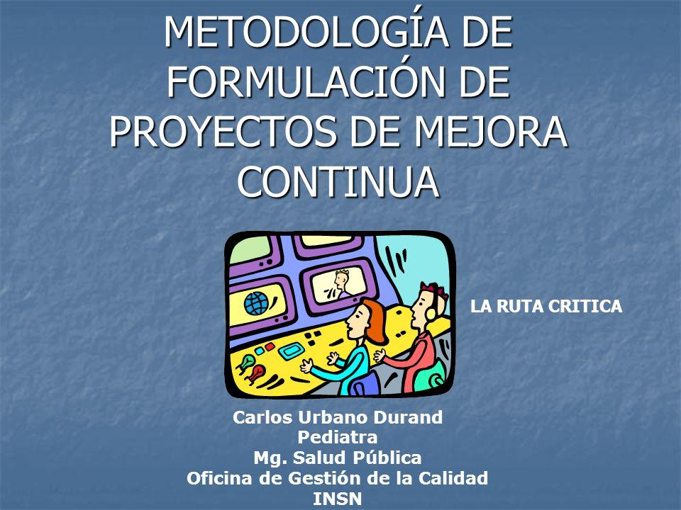 METODOLOGÍA DE FORMULACIÓN DE PROYECTOS DE MEJORA CONTINUA