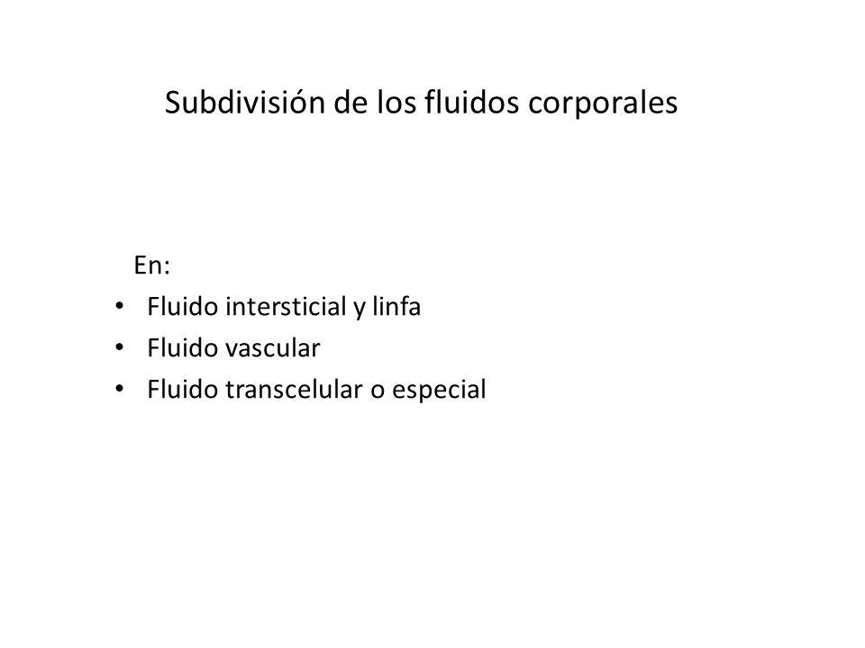 Subdivisión de los fluidos corporales
