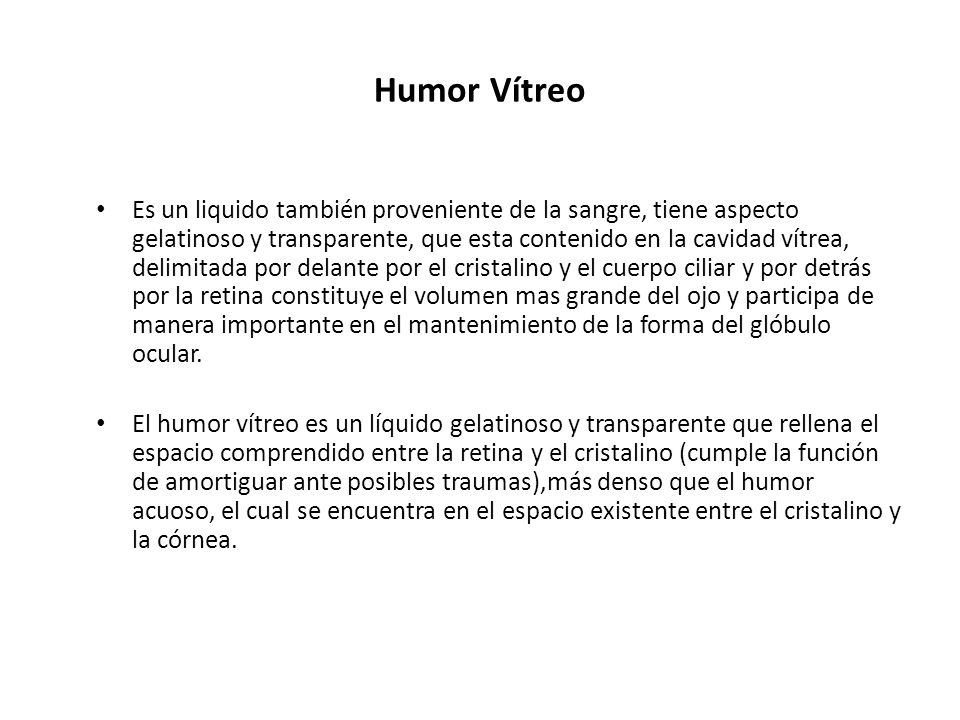 Humor Vítreo