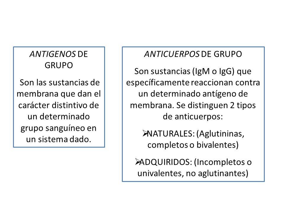 NATURALES: (Aglutininas, completos o bivalentes)