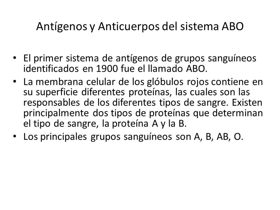 Antígenos y Anticuerpos del sistema ABO