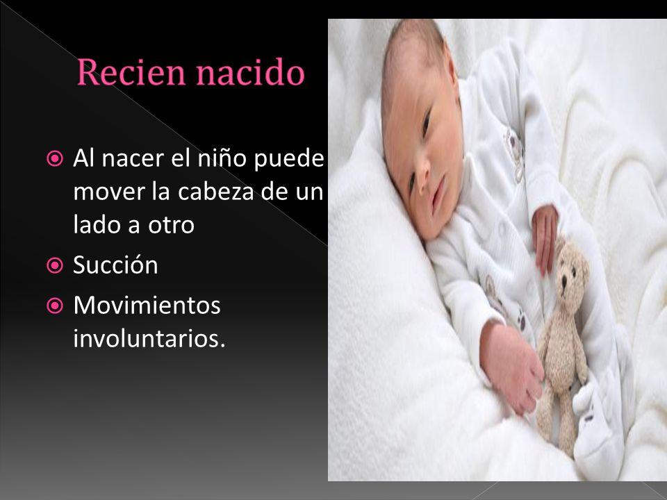 Recien nacido Al nacer el niño puede mover la cabeza de un lado a otro