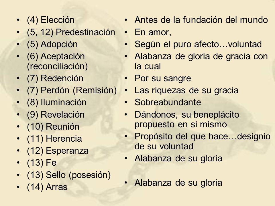 (4) Elección (5, 12) Predestinación. (5) Adopción. (6) Aceptación (reconciliación) (7) Redención.