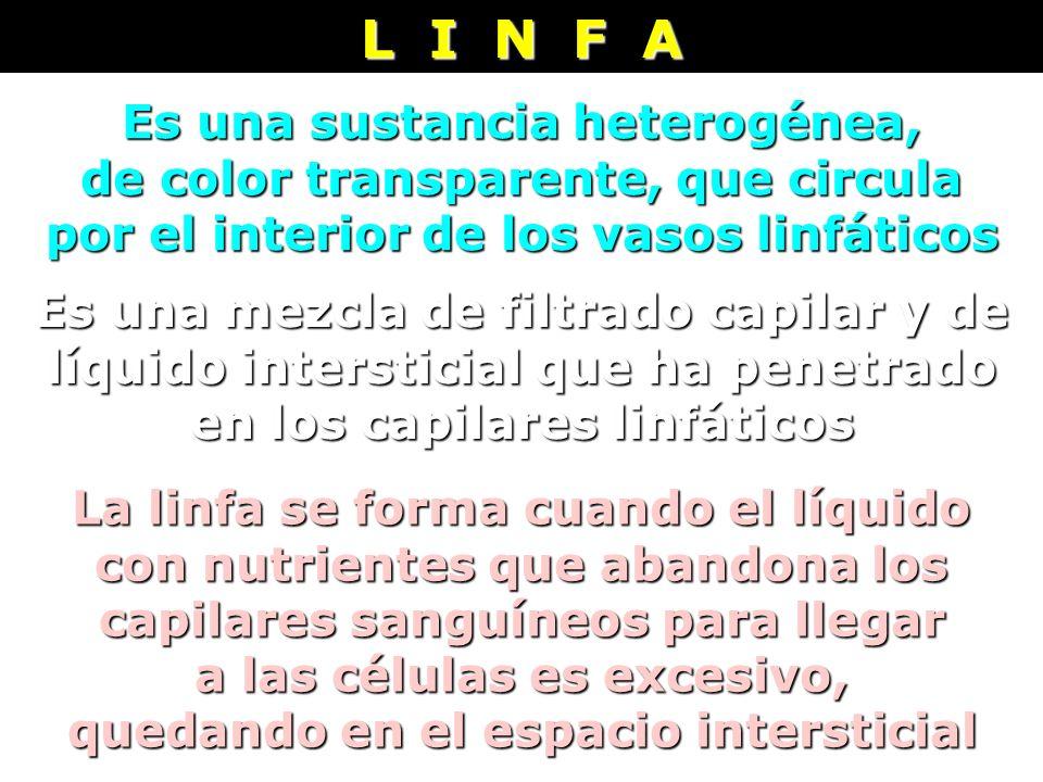 L I N F A Es una sustancia heterogénea,