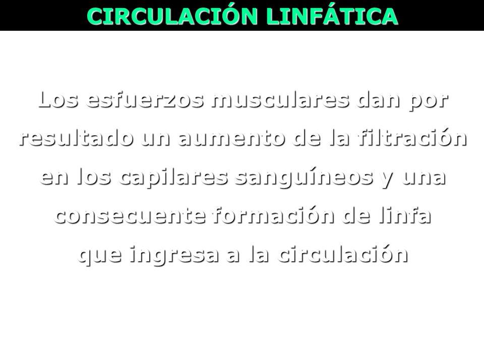 CIRCULACIÓN LINFÁTICA que ingresa a la circulación