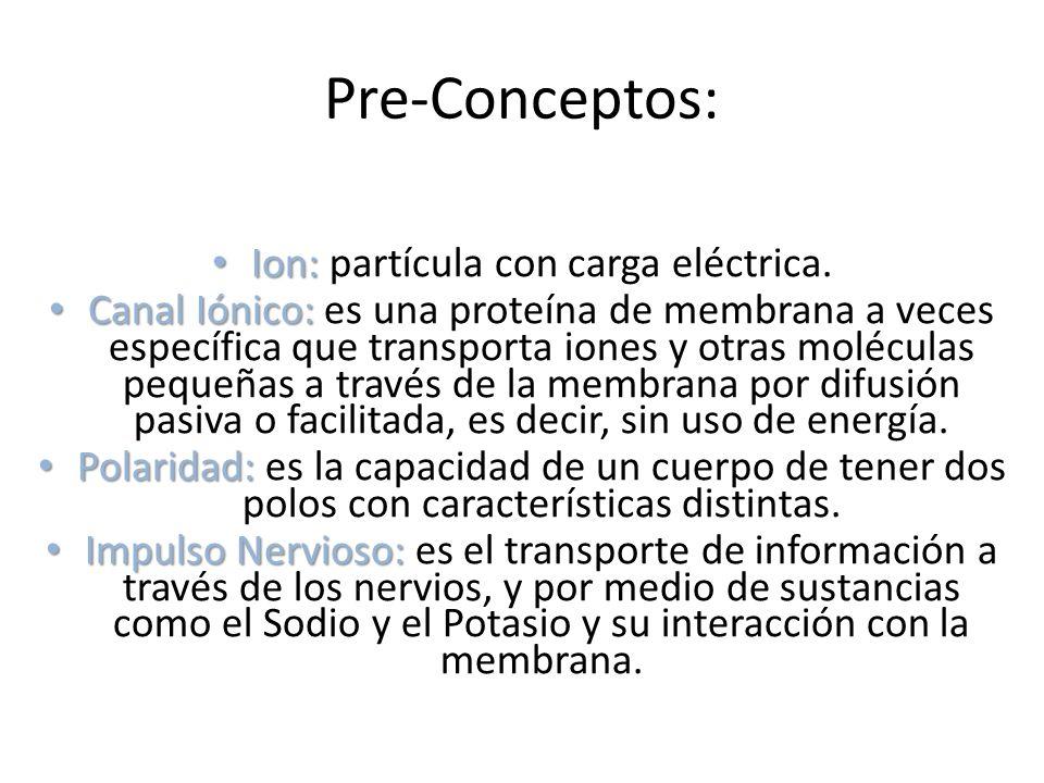 Ion: partícula con carga eléctrica.