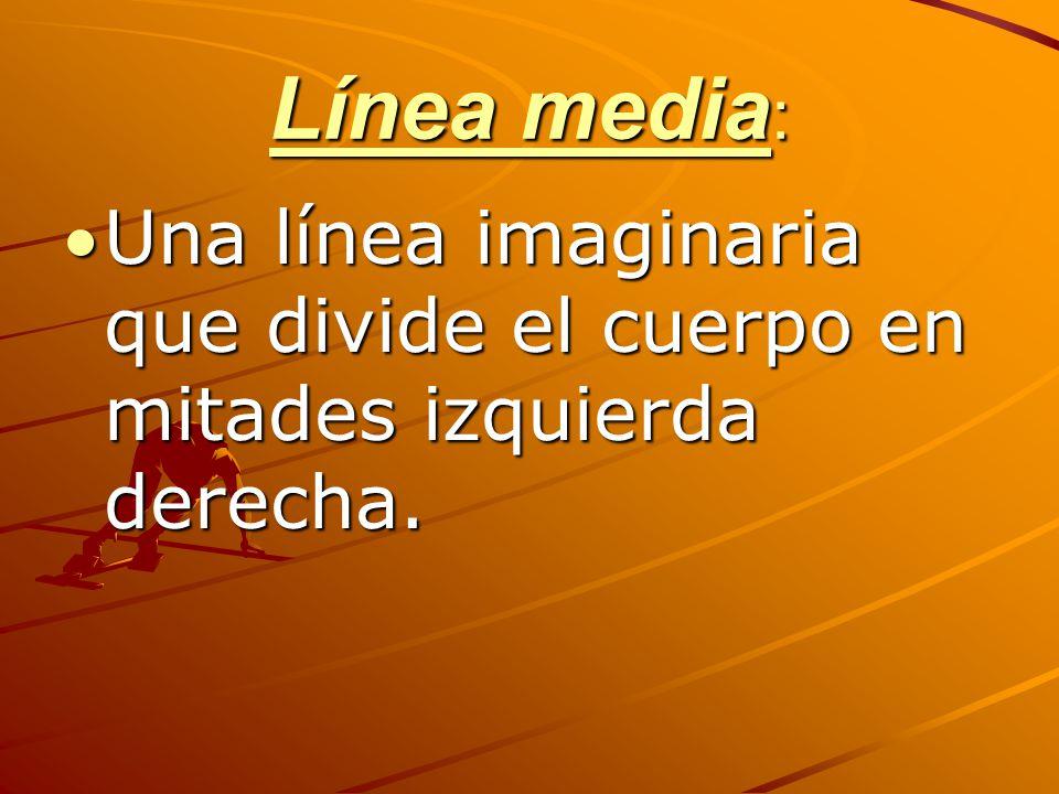 Línea media: Una línea imaginaria que divide el cuerpo en mitades izquierda derecha.