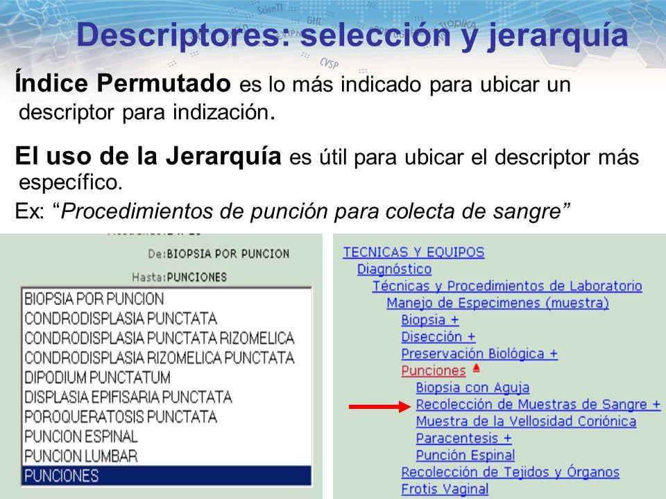 Descriptores: selección y jerarquía