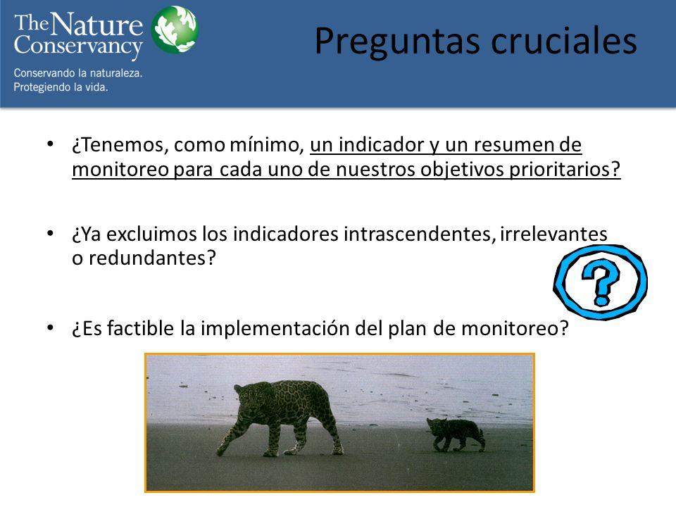 Preguntas cruciales ¿Tenemos, como mínimo, un indicador y un resumen de monitoreo para cada uno de nuestros objetivos prioritarios