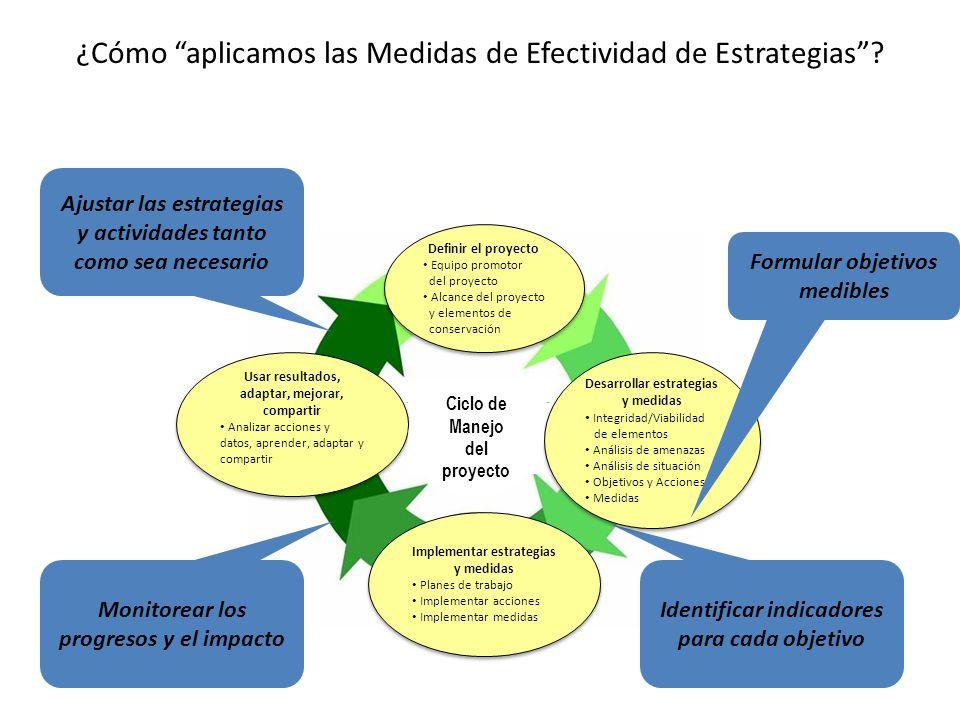 ¿Cómo aplicamos las Medidas de Efectividad de Estrategias