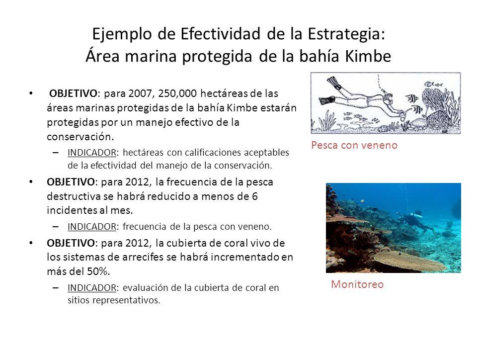 Ejemplo de Efectividad de la Estrategia: Área marina protegida de la bahía Kimbe