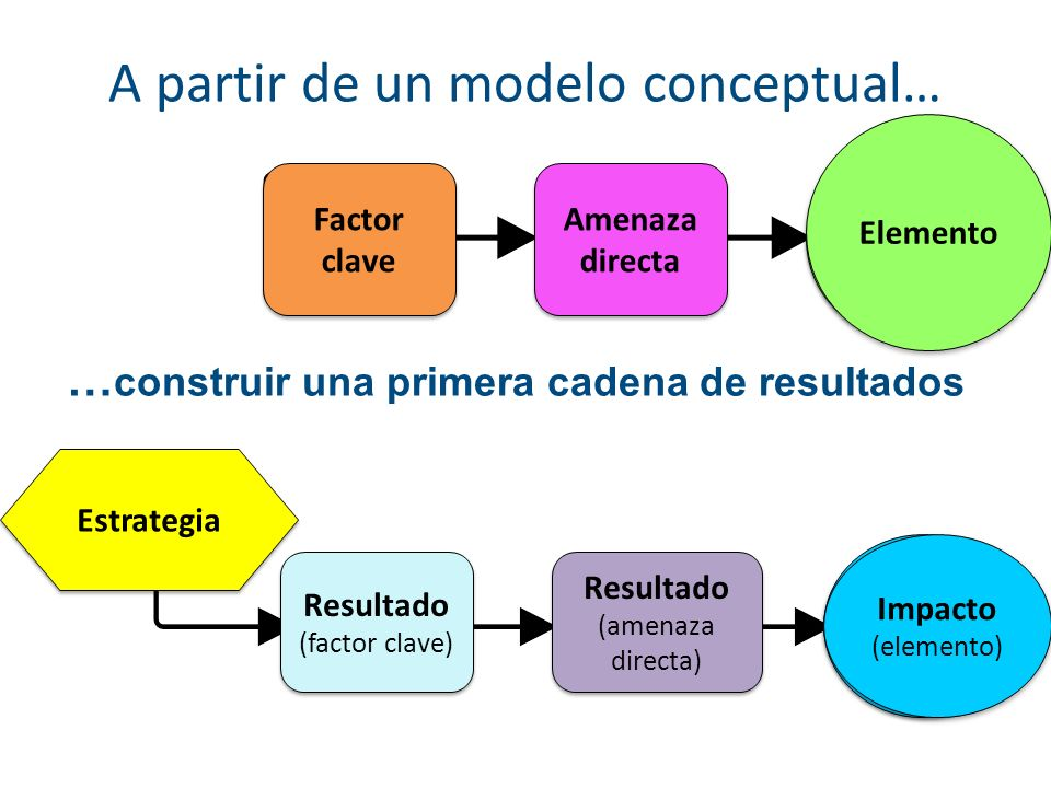 A partir de un modelo conceptual…