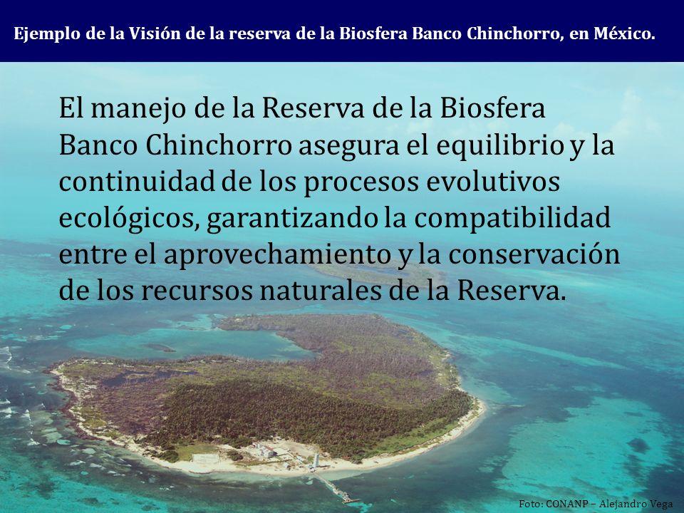 El manejo de la Reserva de la Biosfera Banco Chinchorro asegura el equilibrio y la continuidad de los procesos evolutivos ecológicos, garantizando la compatibilidad entre el aprovechamiento y la conservación de los recursos naturales de la Reserva.