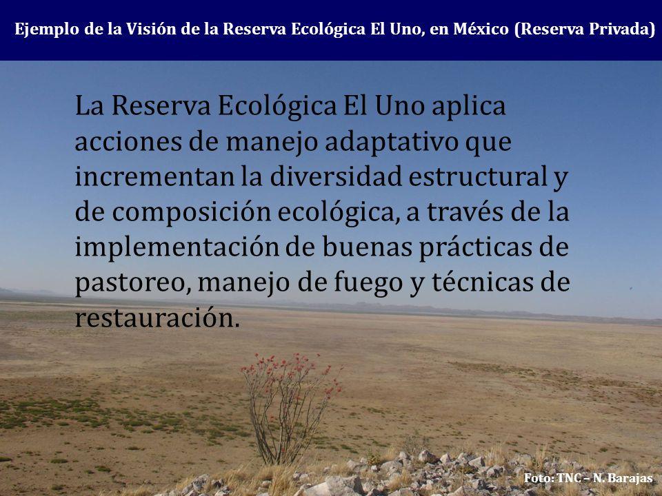Ejemplo de la Visión de la Reserva Ecológica El Uno, en México (Reserva Privada)