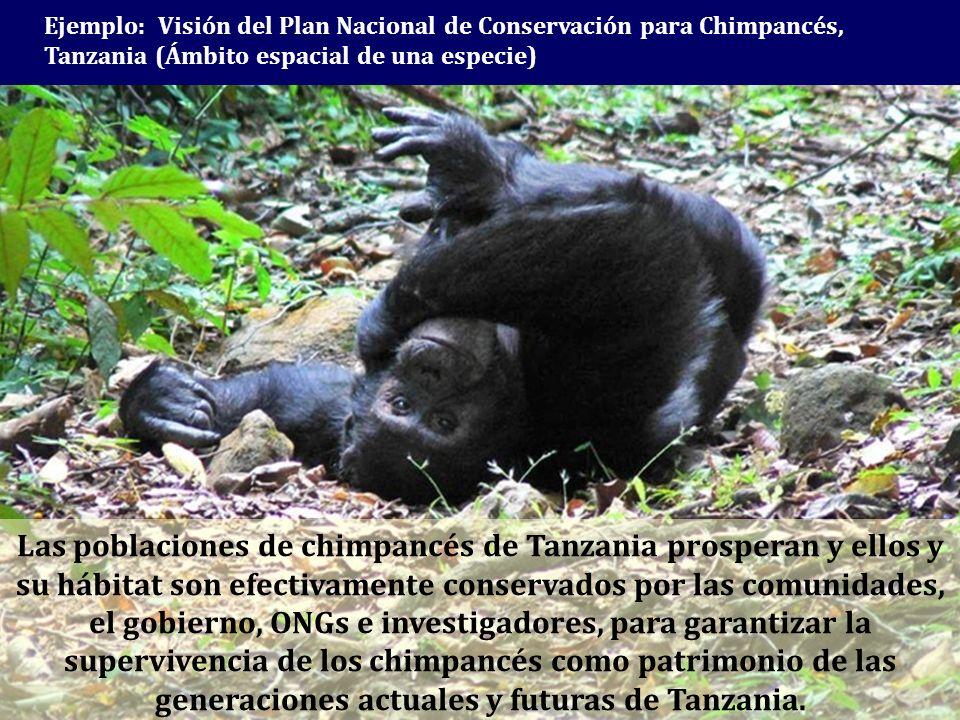 Ejemplo: Visión del Plan Nacional de Conservación para Chimpancés, Tanzania (Ámbito espacial de una especie)