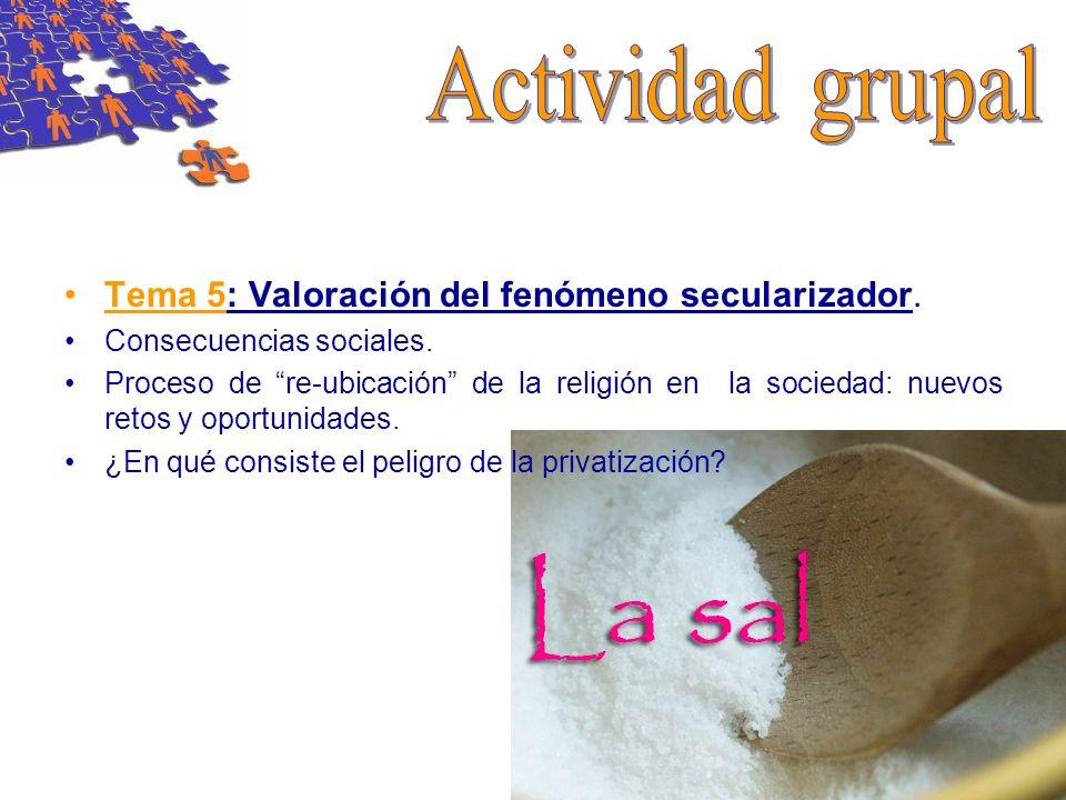 Actividad grupal Tema 5: Valoración del fenómeno secularizador.