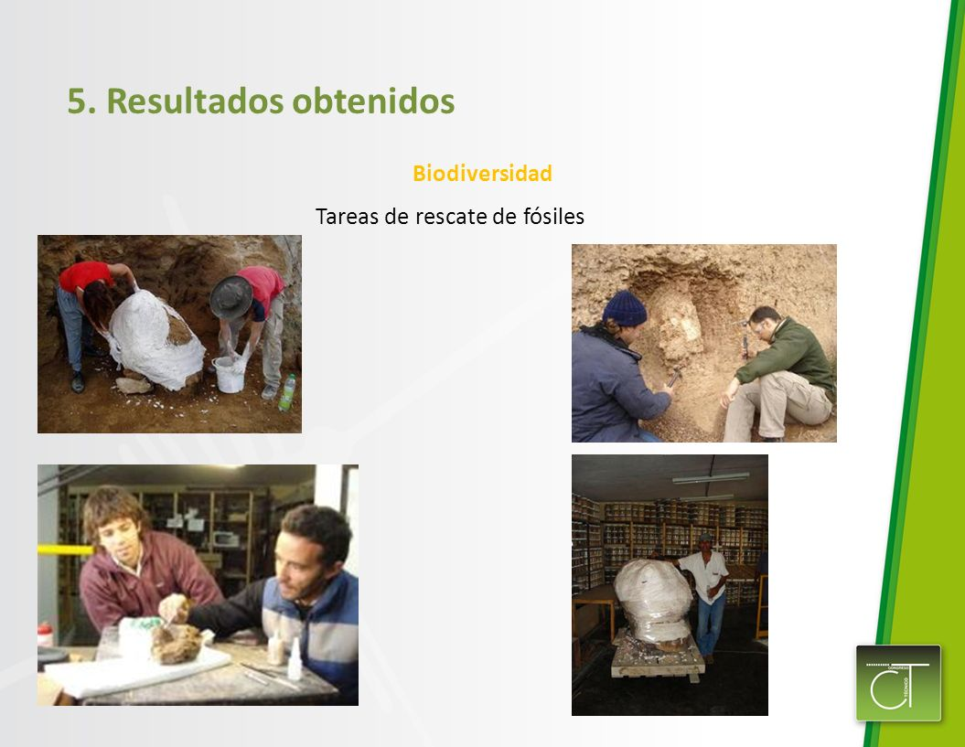 5. Resultados obtenidos Biodiversidad Tareas de rescate de fósiles