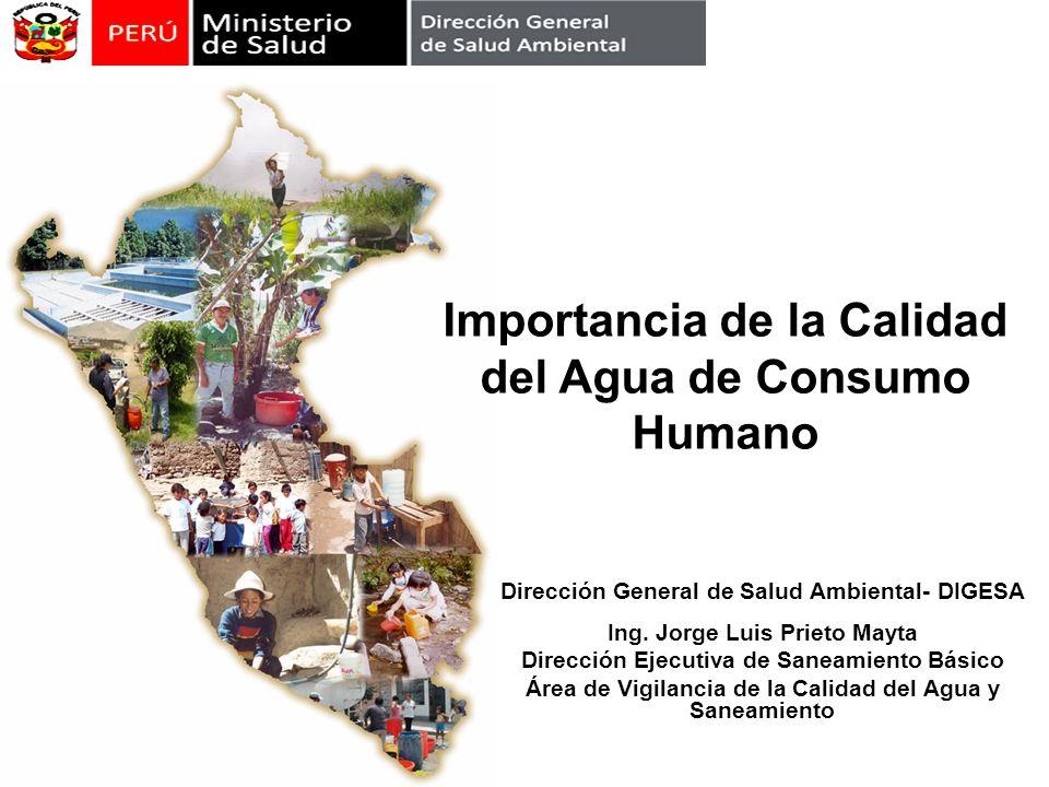 Dirección General de Salud Ambiental- DIGESA