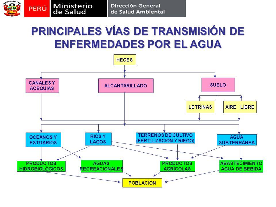 PRINCIPALES VÍAS DE TRANSMISIÓN DE ENFERMEDADES POR EL AGUA