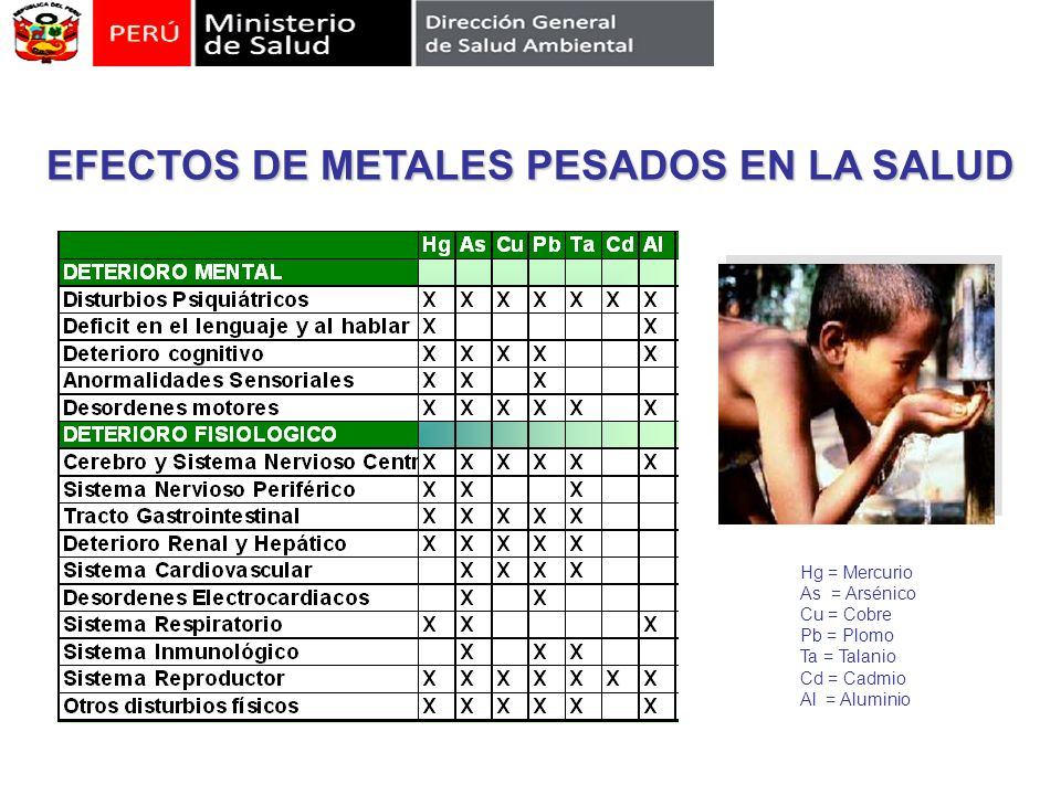EFECTOS DE METALES PESADOS EN LA SALUD