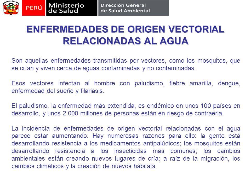 ENFERMEDADES DE ORIGEN VECTORIAL RELACIONADAS AL AGUA