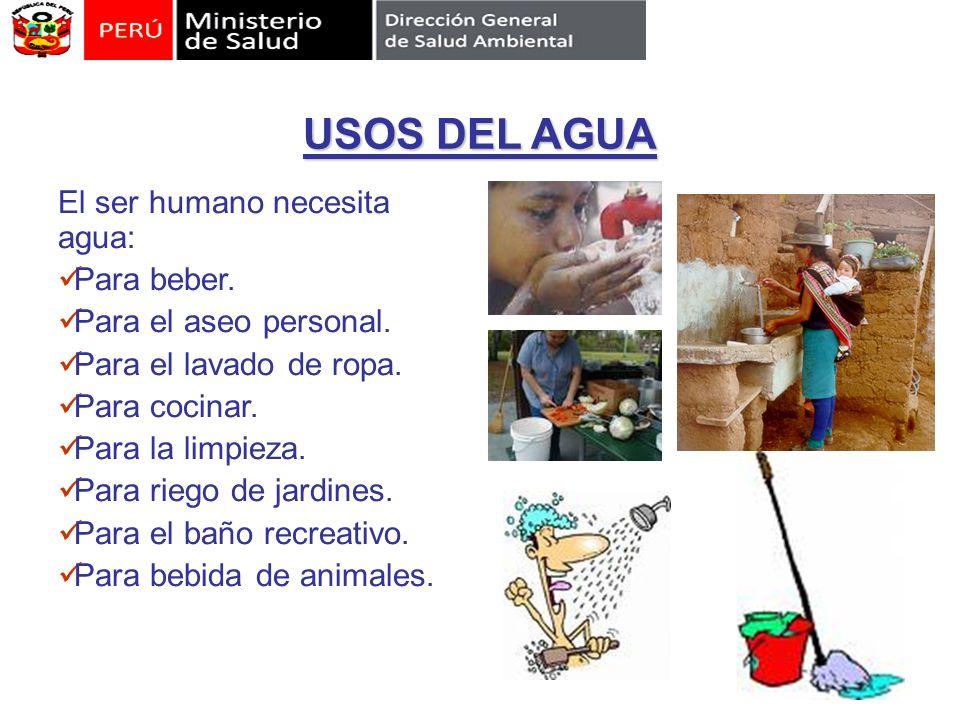 USOS DEL AGUA El ser humano necesita agua: Para beber.