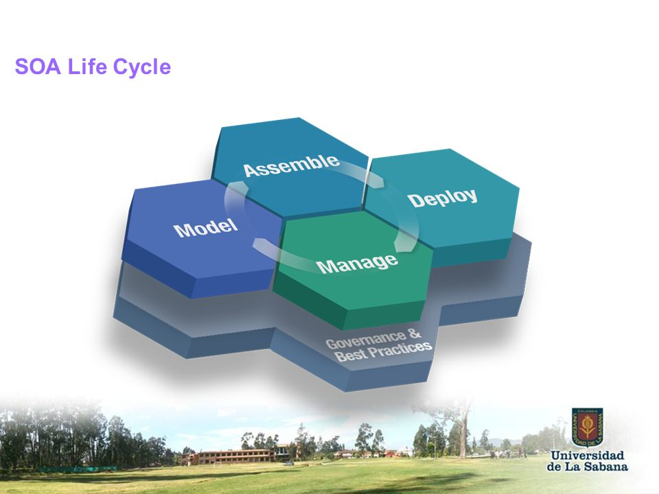 SOA Life Cycle SOA design principles