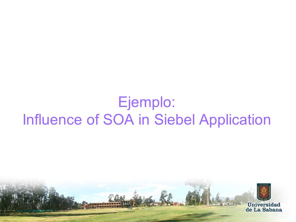 Ejemplo: Influence of SOA in Siebel Application