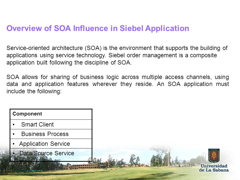 Overview of SOA Influence in Siebel Application