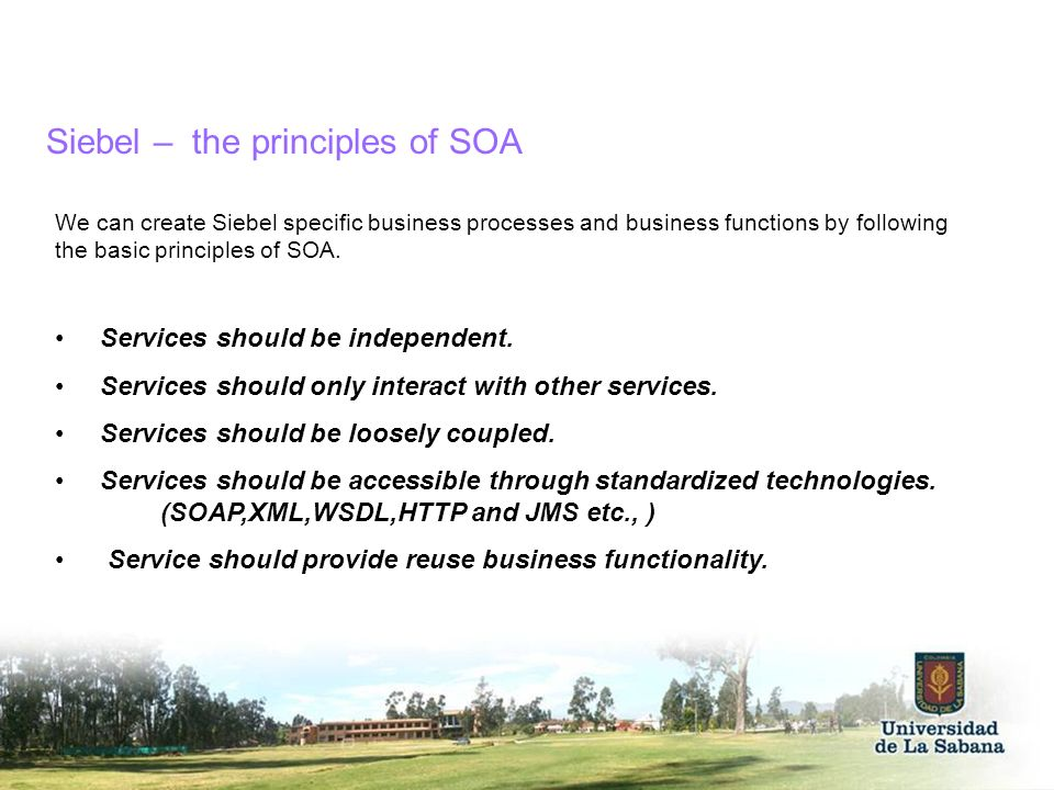 Siebel – the principles of SOA