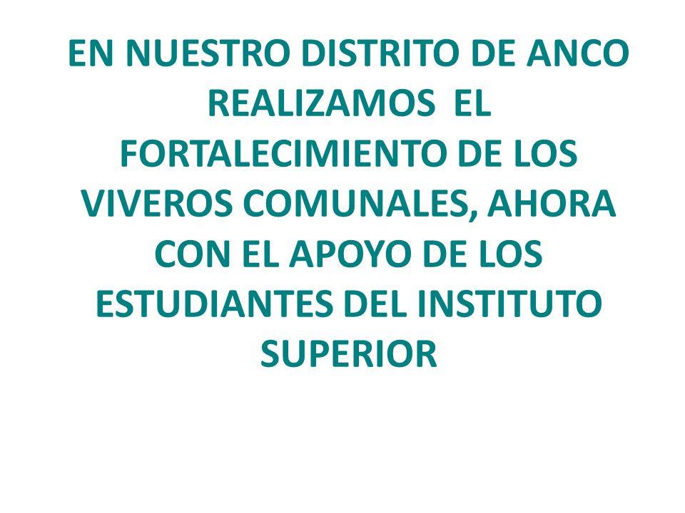 EN NUESTRO DISTRITO DE ANCO REALIZAMOS EL FORTALECIMIENTO DE LOS VIVEROS COMUNALES, AHORA CON EL APOYO DE LOS ESTUDIANTES DEL INSTITUTO SUPERIOR
