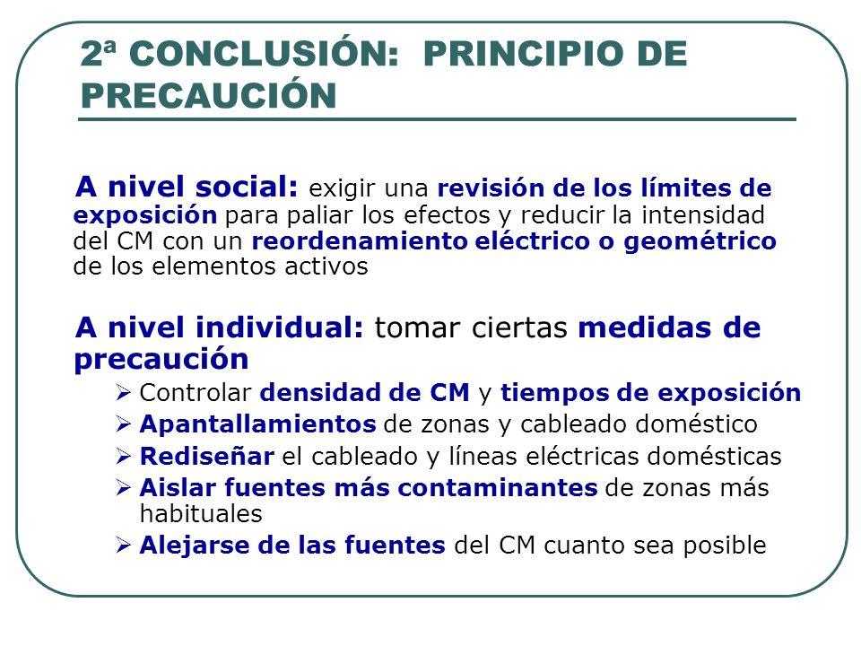 2ª CONCLUSIÓN: PRINCIPIO DE PRECAUCIÓN