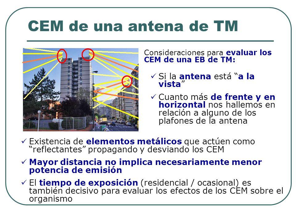 CEM de una antena de TM Si la antena está a la vista