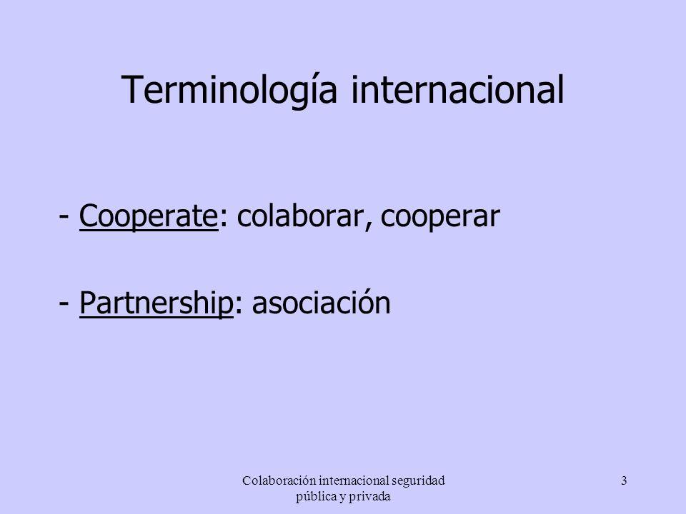 Terminología internacional