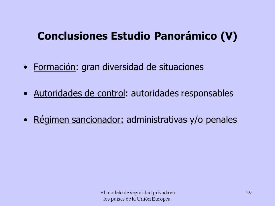 Conclusiones Estudio Panorámico (V)