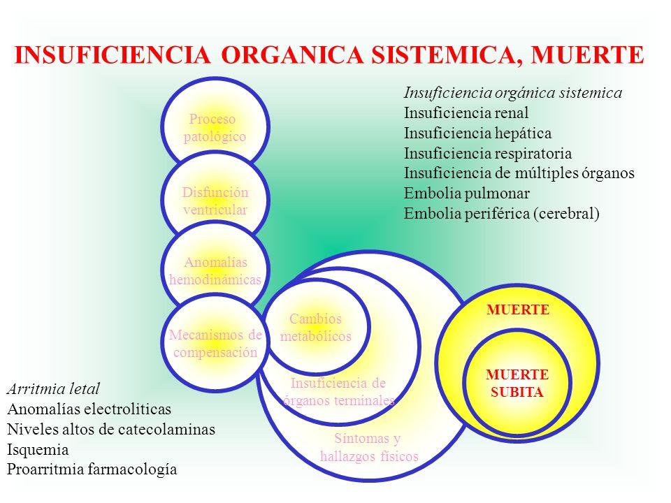 INSUFICIENCIA ORGANICA SISTEMICA, MUERTE