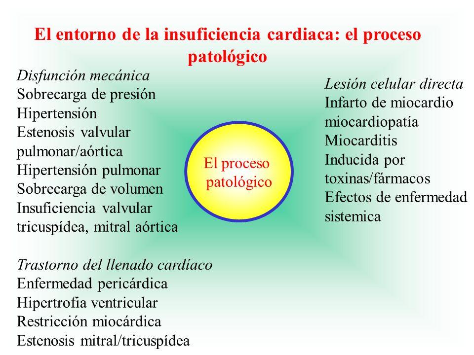 El entorno de la insuficiencia cardiaca: el proceso patológico
