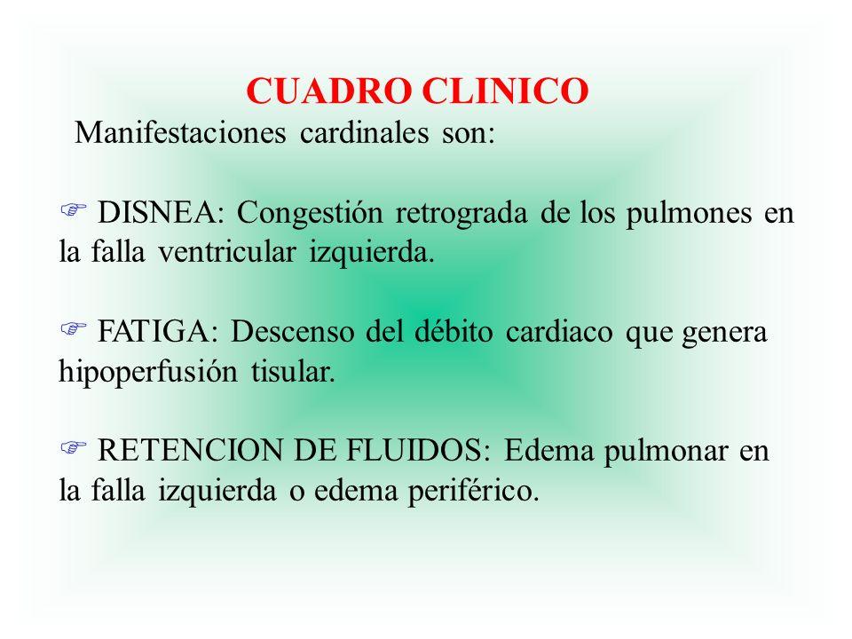 CUADRO CLINICO Manifestaciones cardinales son: