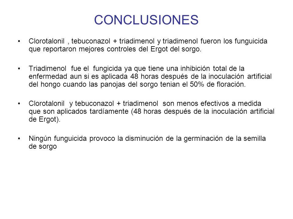 CONCLUSIONES Clorotalonil , tebuconazol + triadimenol y triadimenol fueron los funguicida que reportaron mejores controles del Ergot del sorgo.