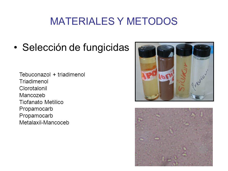 Selección de fungicidas