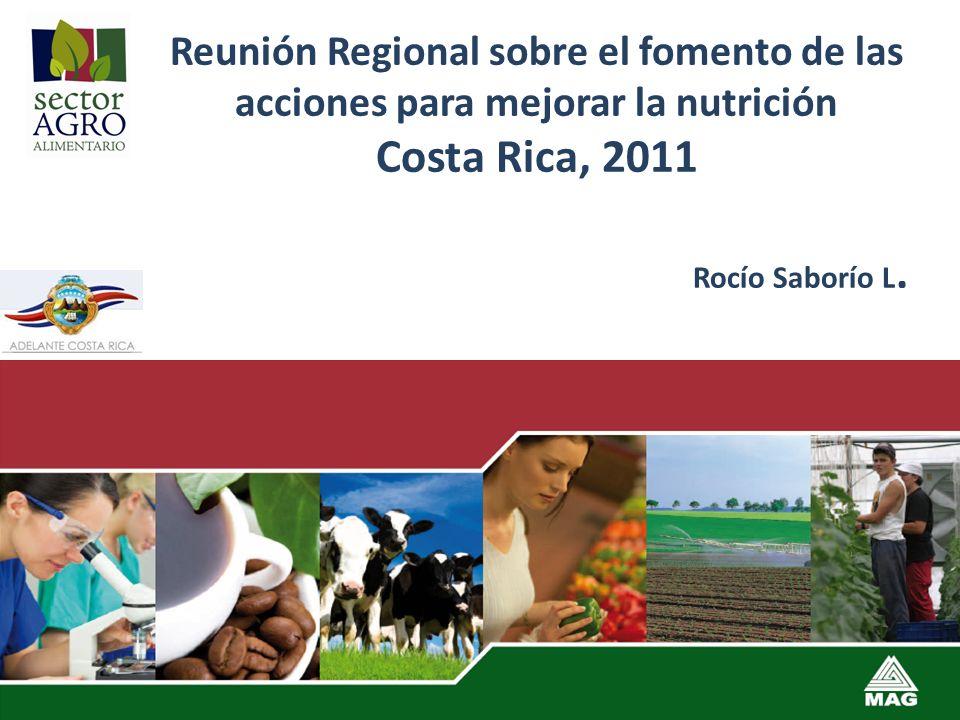 Reunión Regional sobre el fomento de las acciones para mejorar la nutrición