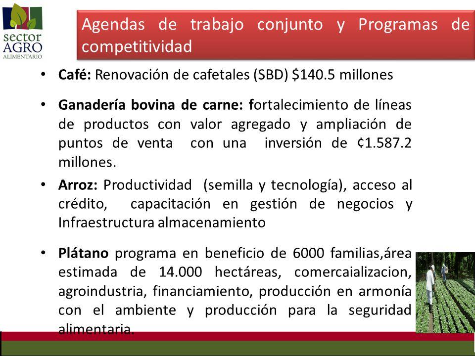 Agendas de trabajo conjunto y Programas de competitividad