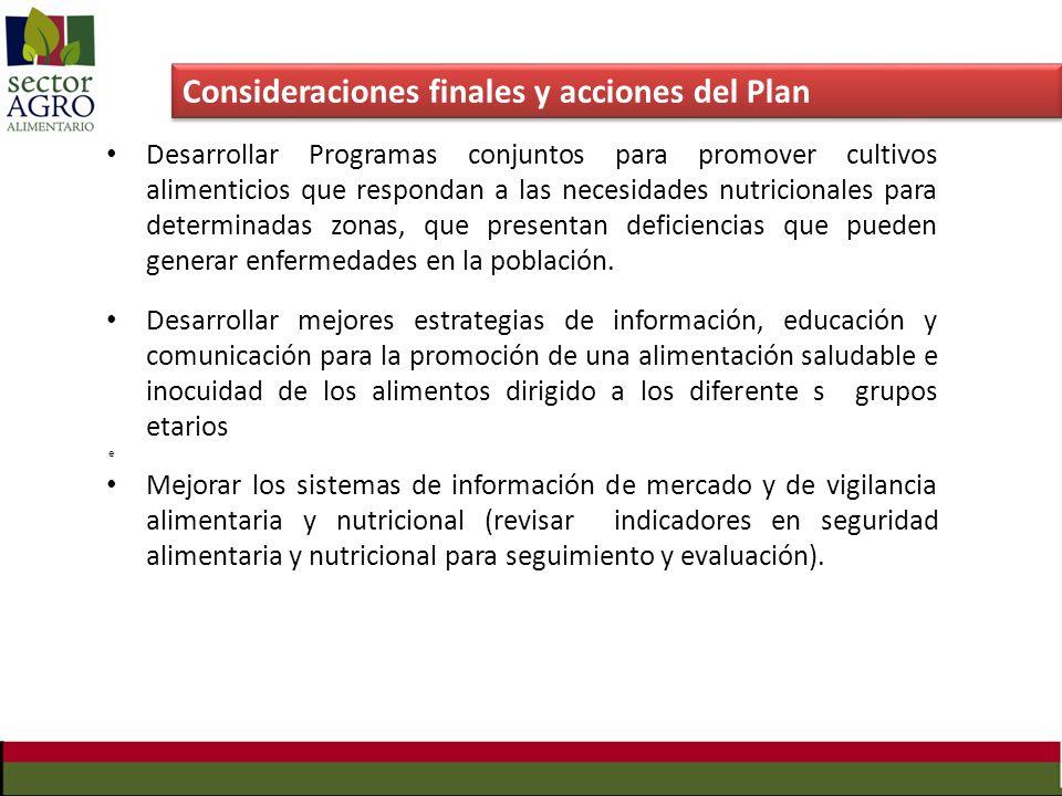 Consideraciones finales y acciones del Plan