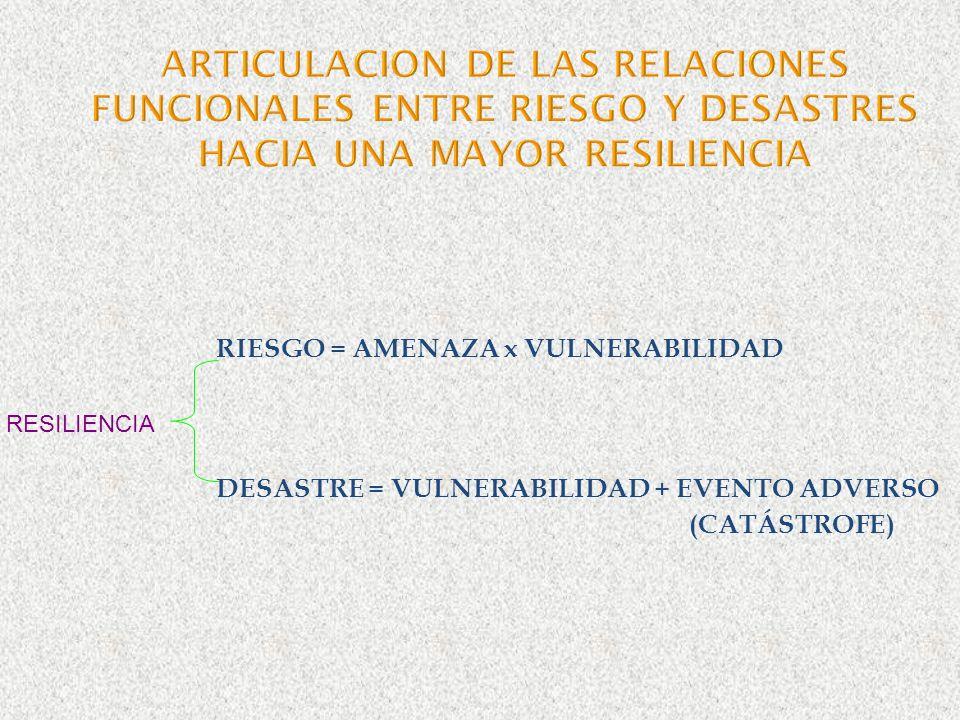 ARTICULACION DE LAS RELACIONES FUNCIONALES ENTRE RIESGO Y DESASTRES HACIA UNA MAYOR RESILIENCIA