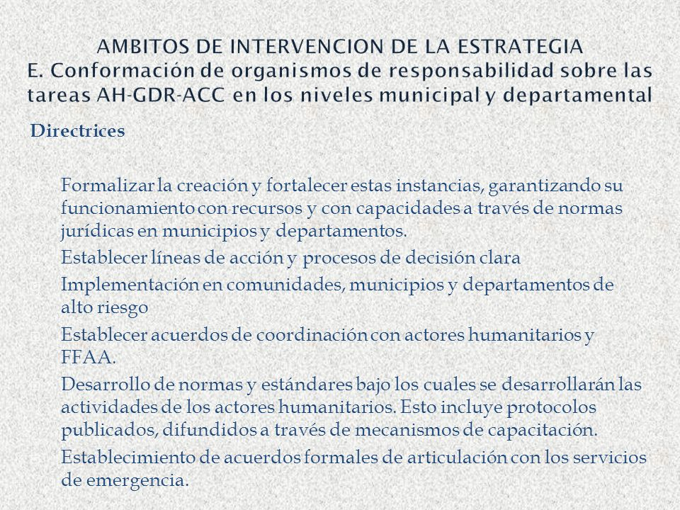 AMBITOS DE INTERVENCION DE LA ESTRATEGIA E
