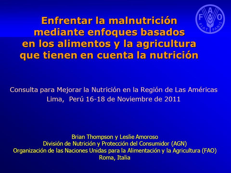 Enfrentar la malnutrición mediante enfoques basados en los alimentos y la agricultura que tienen en cuenta la nutrición