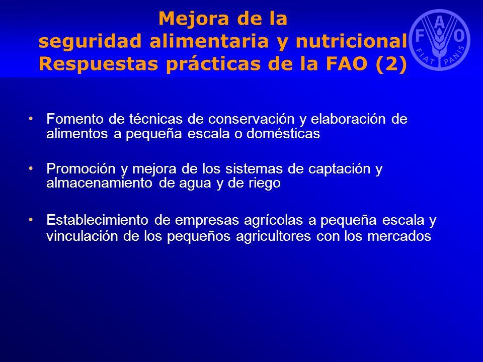 Mejora de la seguridad alimentaria y nutricional Respuestas prácticas de la FAO (2)