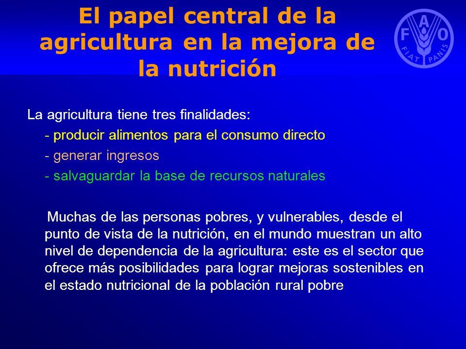 El papel central de la agricultura en la mejora de la nutrición