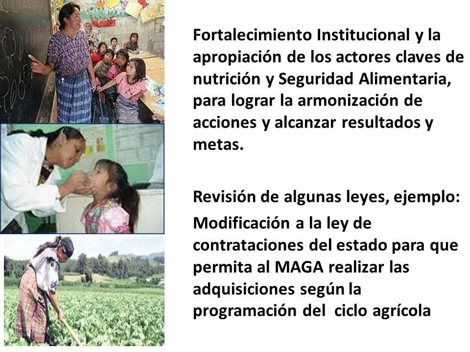 Fortalecimiento Institucional y la apropiación de los actores claves de nutrición y Seguridad Alimentaria, para lograr la armonización de acciones y alcanzar resultados y metas.