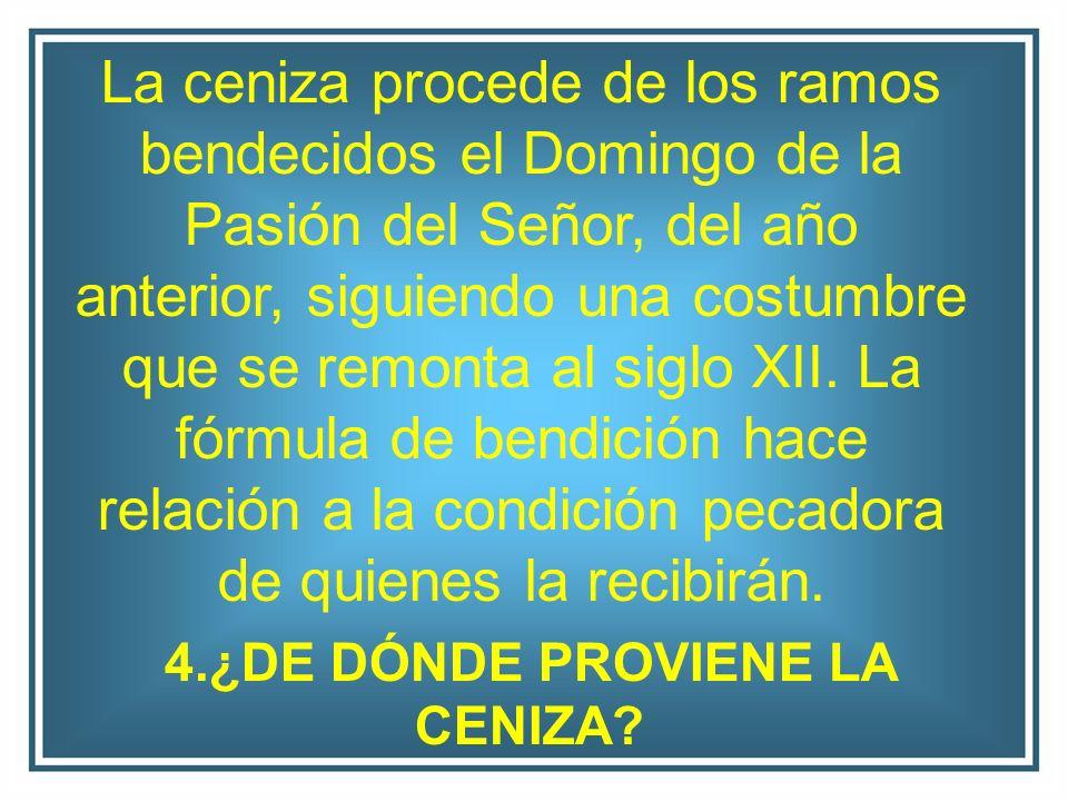 4.¿DE DÓNDE PROVIENE LA CENIZA